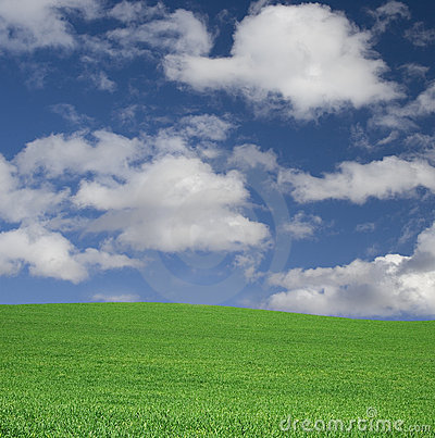 Ideal sky and grass on a hill