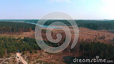 Ideia aérea da área deforestated ao longo do rio vídeos de arquivo