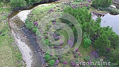Ideia aérea da paisagem paradisal de Glen Etive vídeos de arquivo