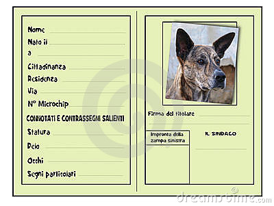 Identification for dogs
