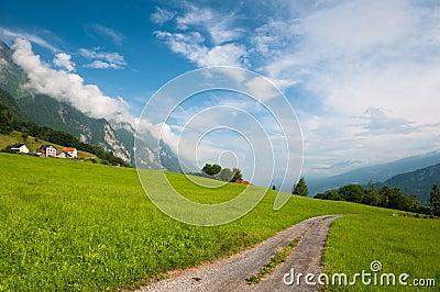 Idyllic Alpine meadow with road. Switzerland
