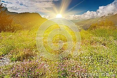 Idyllic Alpine scene in sun rays