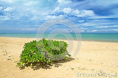 Idyllic beach of Andaman Sea in Koh Kho Khao