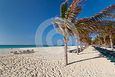 Idyllic beach at the Caribbean sea