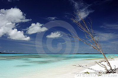Idyllic beach in New Caledonia