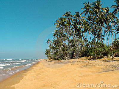 Idyllic beach in Sri Lanka