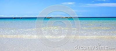 Idyllic Coastal Scene