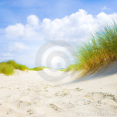 Free Idyllic Dunes With Sunlight Stock Images - 11327194