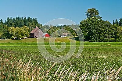 Idyllic Family Farm Landscape