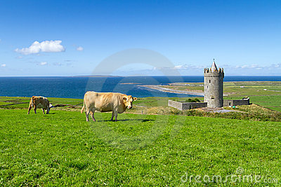 Idyllic irish scenery