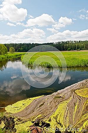 Idyllic river