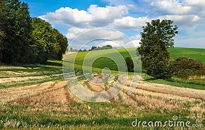Idyllic rural landscape