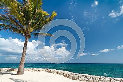 Idyllic scenery of Caribbean sea