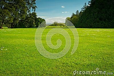 Idyllic summer golf course