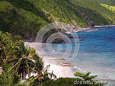 Tropical beach in Davis Bay
