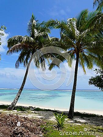 Idyllic tropical beach in Rarotonga