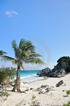 Idyllic White Sand Beach on the Sea