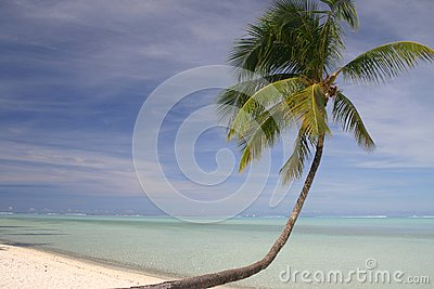 Idylliczna piaskowata plaża