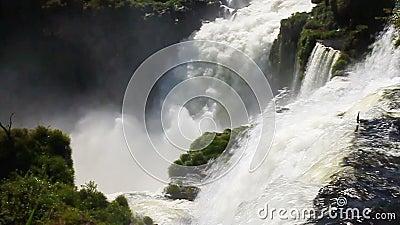 Iguazu Falls video estoque