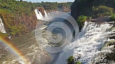 Iguazu Falls. Front view of the Iguazu Falls stock video footage