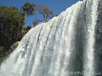 Iguazu waterfalls Editorial Stock Image