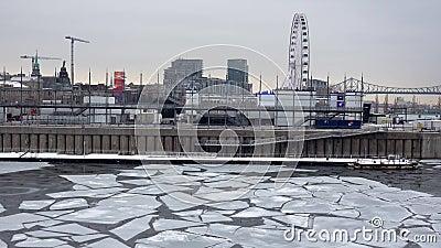 IJsblad smelten medio januari in een stedelijk gebied stock video
