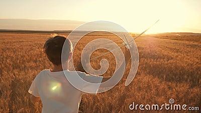 Il bambino felice funziona con un aeroplano del giocattolo su un fondo del tramonto sopra un campo Il concetto di una famiglia fe archivi video