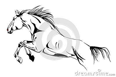 Il Cavallo Salta L 39 Illustrazione Di Vettore Immagini Stock