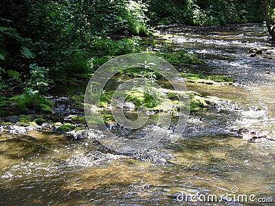Il fiume della montagna.