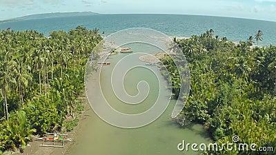 Il fiume sfocia nel mare Ponticello della strada filippine Isola di Bohol archivi video