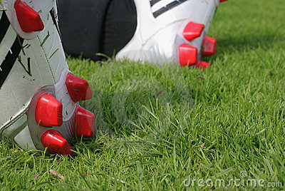 Il gioco del calcio caric il sistemaare un erba