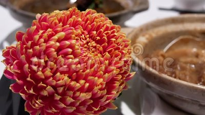 Il moto di tè caldo ed il fiore su moto della sfuocatura e della tavola della gente godono del pasto archivi video