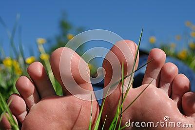 Il piede pianta la natura di traverso del sole