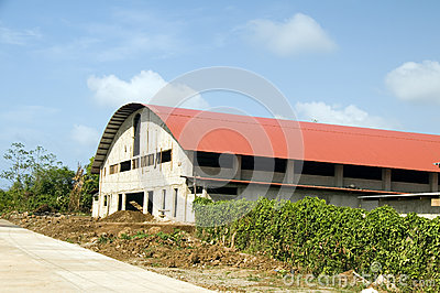 Ilha de milho grande do centro do ginásio da aptidão da recreação dos esportes internos