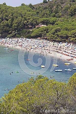 Ilha do mar da Ilha de Elba