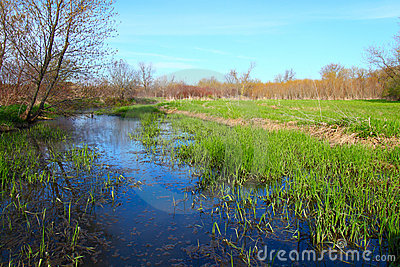 Illinois Backwaters