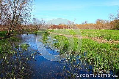 Illinois-Stauwasser