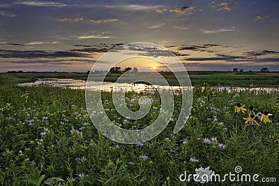 Illinois över solnedgång