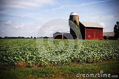 Illinois z gospodarstw rolnych