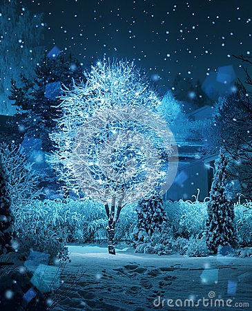 Free Illuminated Tree Winter Garden Snowfall Fantasy Stock Photos - 37359333