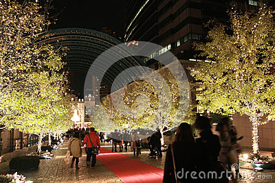 Illumination light decorating on the tree in the winter at Ebisu, Tokyo, Japan Editorial Photography