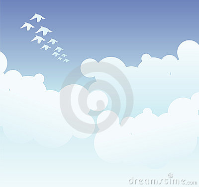 Illustrated birds in sky