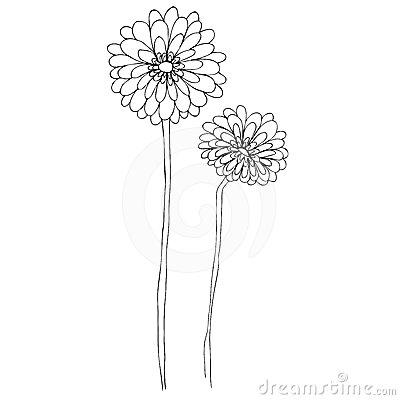 Illustrated cute flowers