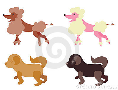 Illustrated dogs
