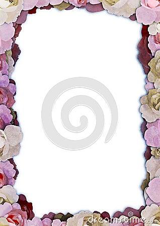 Illustrated floral frame