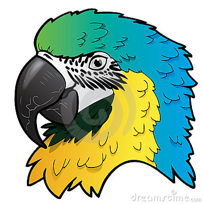 Illustration of Ara parrot