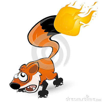 Fox with tail on fire