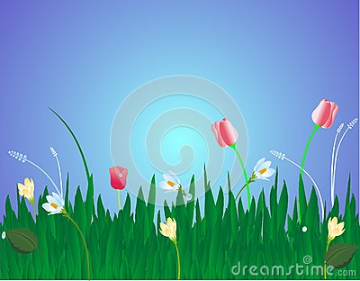 Fleurs dans l illustration d herbe