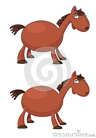 Pferd lustig