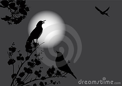 Illustration with flowers and birds under moon